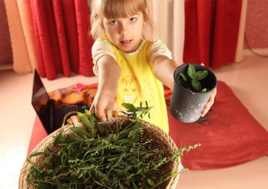 Huerto urbano: beneficios para niños