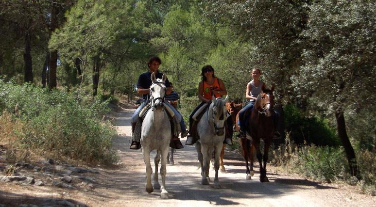 Trotavía, Sevilla con niños