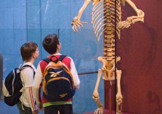 Actividad infantil en CosmoCaixa Barcelona
