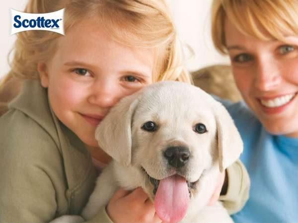 Higiene infantil Scottex