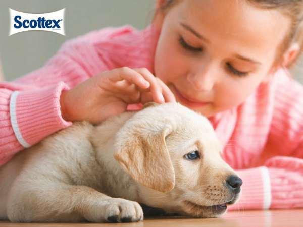 Higiene infantil: consejos de higiene Scottex