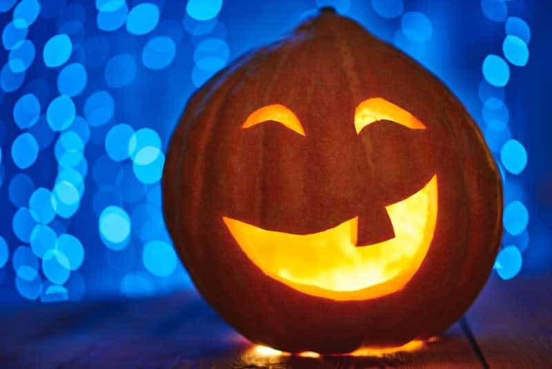 15 ideas de calabazas decoradas de Halloween 3