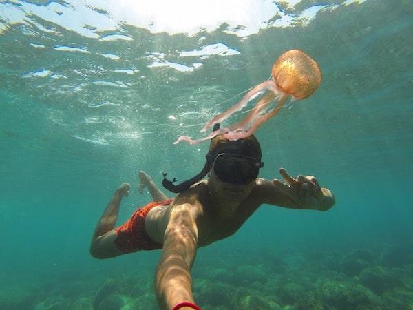 ¿Una crema solar que protege contra las medusas...? 2