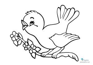 Dibujos colorear pájaros