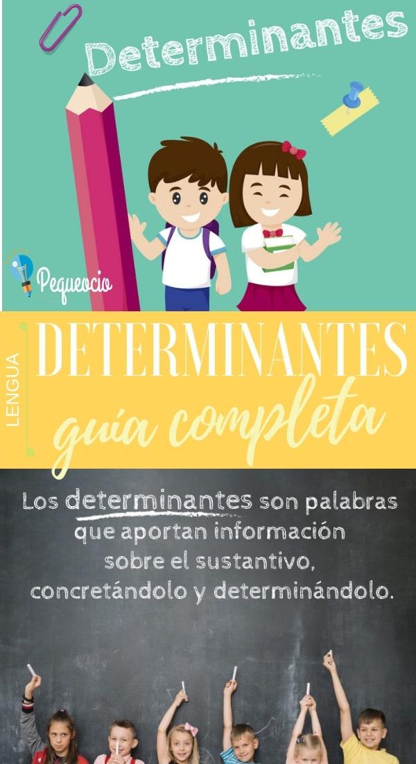 Qué son y para qué sirven los determinantes