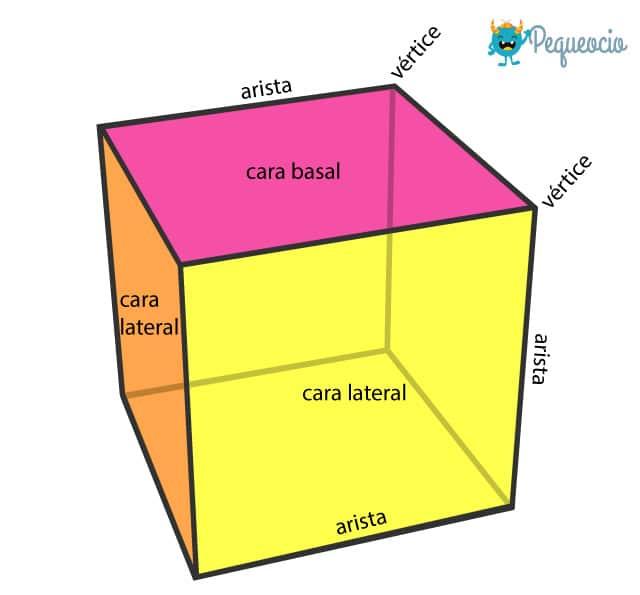 Partes de un poliedro