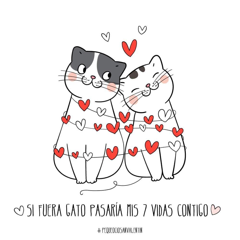 San Valentín frases de amor