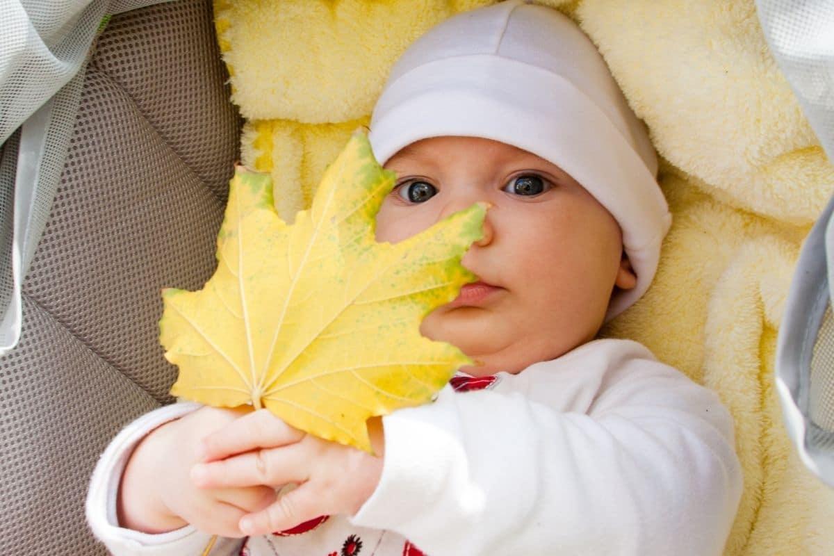 paseos a los bebés en otoño