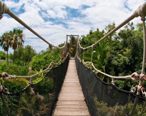 Jungle Park Tenerife
