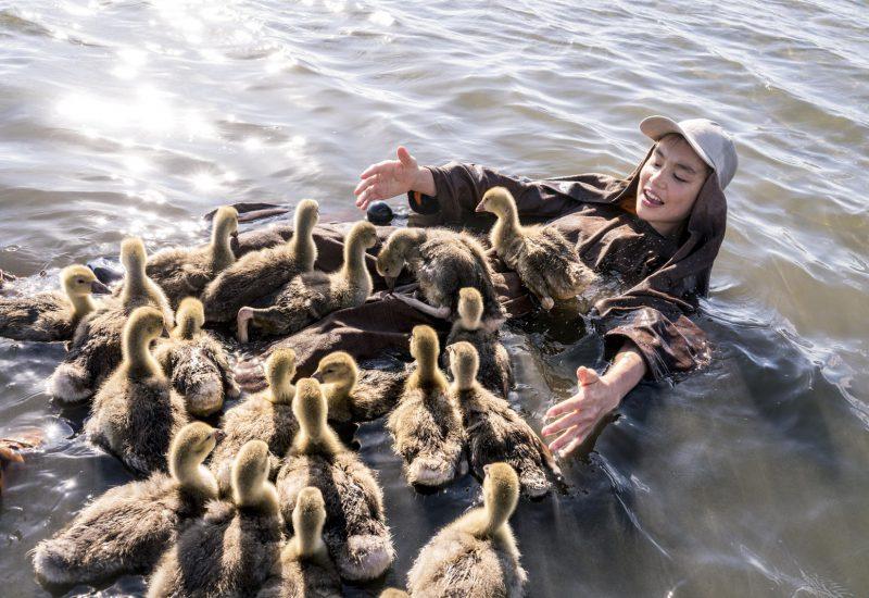 pelicula infantil volando juntos 2020 patos