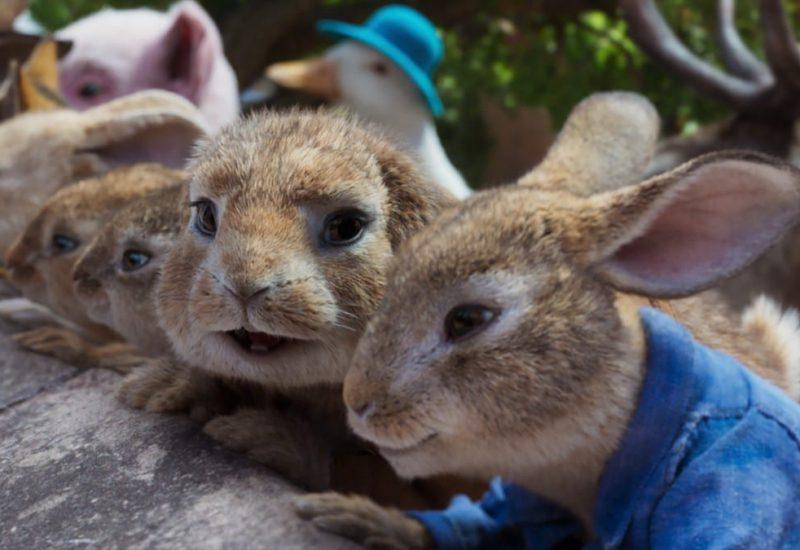peter rabbit 2 pelicula 2020